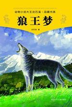 《狼王梦》读后作文