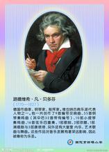 《贝多芬》读后作文