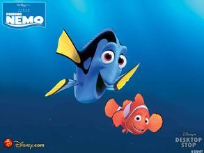 《海底总动员》观后感