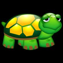 《乌龟》后作文