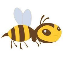 《蜜蜂》后作文