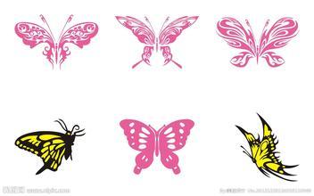 《蝴蝶》后作文
