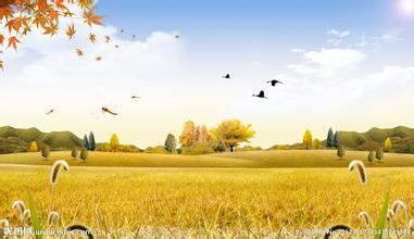 《秋天》后作文