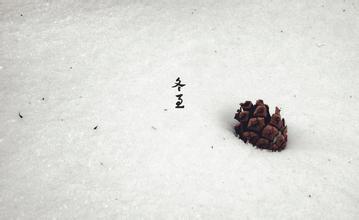 《冬至》后作文