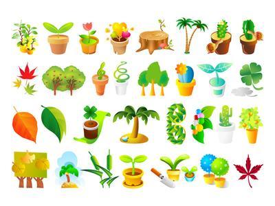 《植物》后作文